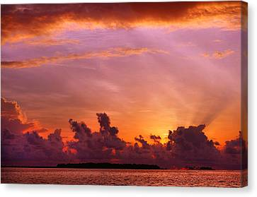Show Must Go On. Tropical Sunset Canvas Print by Jenny Rainbow