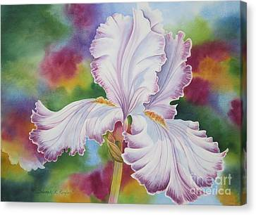 Showstopper Canvas Print by Deborah Ronglien