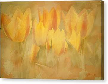 Showtime Tulips Canvas Print