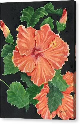 Hibiscus Canvas Print - Showy Hibiscus by Marsha Elliott