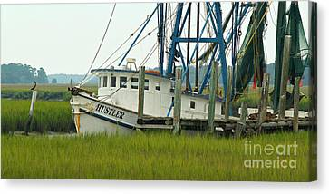 Shrimp Boat And Pelican - Lowlands Of South Carolina Canvas Print by Anna Lisa Yoder