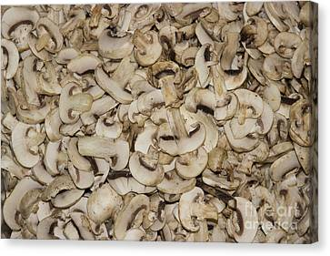 Shrooms Canvas Print by Al Bourassa