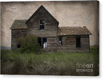 Shrouded In Mystery Canvas Print by Sandra Bronstein