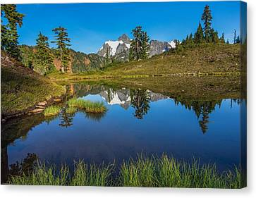 Shuksan Reflection Canvas Print by Gene Garnace
