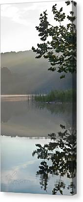 Canvas Print featuring the photograph Shy Vanity by Tom Cameron