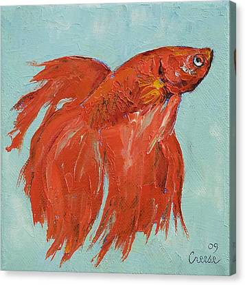 Betta Canvas Print - Siamese Fighting Fish by Michael Creese