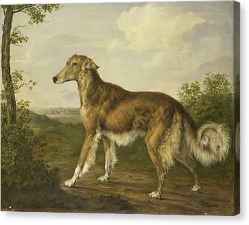 Siberian Greyhound, Jan Dasveldt Canvas Print