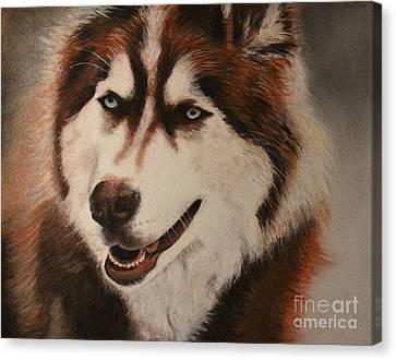 Siberian Husky Canvas Print by Isri Lara Sambo