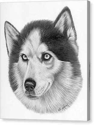 Siberian Husky Canvas Print by Rita Palmer