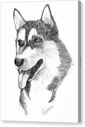 Siberian Husky Canvas Print by Tricia Griffith