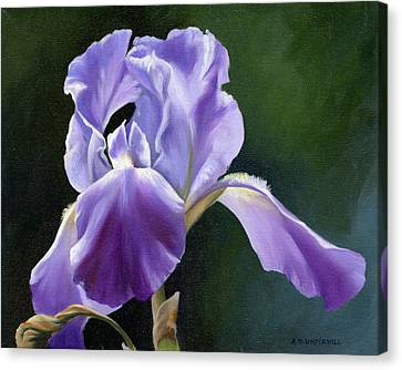 Siberian Iris Canvas Print