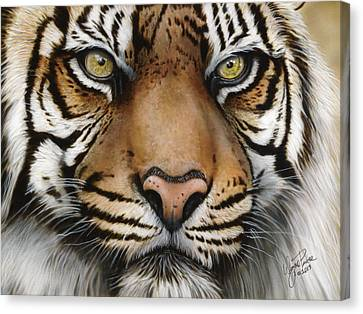 Siberian Tiger Closeup Canvas Print