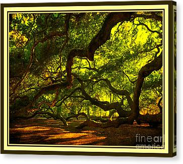 Side Limbs Of The 1400 Year Old Angel Oak Canvas Print by Susanne Van Hulst