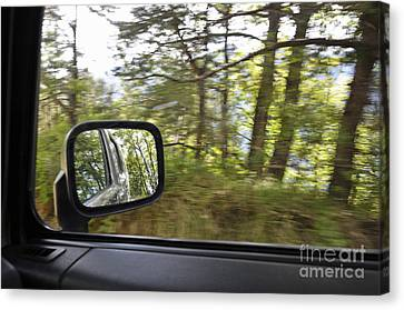 Side-view Mirror Reflecting Forest Canvas Print by Sami Sarkis