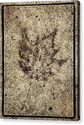 Sidewalk Imprint Canvas Print