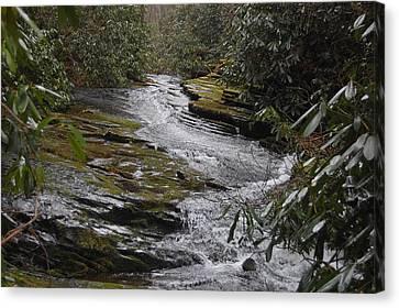 Sideways Creek Canvas Print by Joyce Brooks