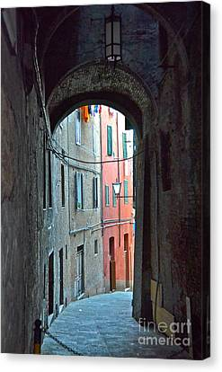 Siena Italy Canvas Print by Amy Fearn