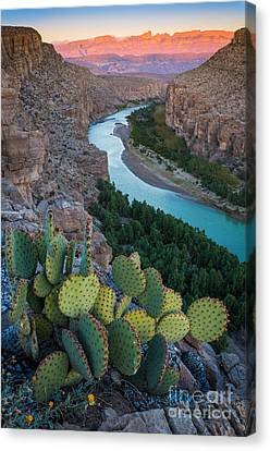 Sierra Del Carmen Canvas Print by Inge Johnsson