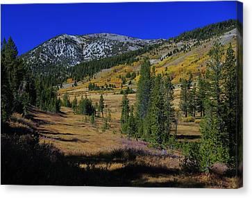 Canvas Print featuring the photograph Sierra Fall  by Sean Sarsfield