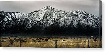 Sierra Nevada Mountains Near Lake Tahoe Canvas Print by Steve Archbold