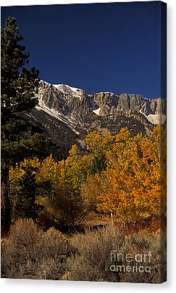 Sierra Nevadas In Autumn Canvas Print by Ron Sanford
