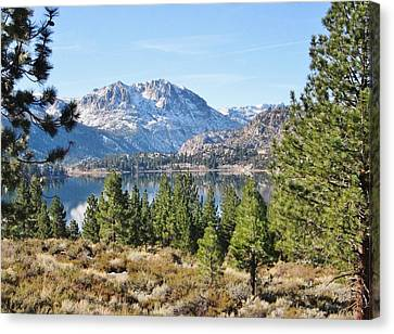 Canvas Print featuring the photograph Sierra Perfect by Marilyn Diaz