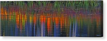 Canvas Print featuring the photograph Sierra Serenity  by Duncan Selby
