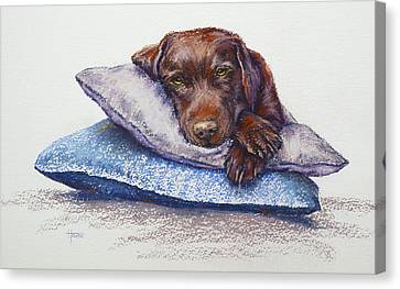 Canvas Print featuring the painting Siesta by Cynthia House