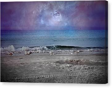 Siesta Key Moon In My Pocket Canvas Print