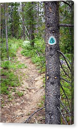 Sign On Continental Divide Trail Canvas Print by Jim West