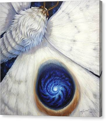 Signature Of The Universe Canvas Print by Lucy West