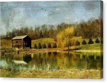 Signs Of Spring Canvas Print by Kathy Jennings