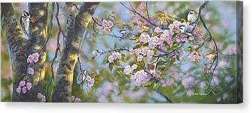 Signs Of Spring Canvas Print by Michael Ashmen
