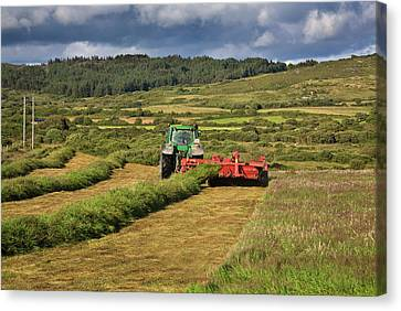 Silage Making,near Bantry,county Cork Canvas Print by Panoramic Images