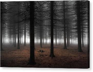 Empty Canvas Print - Silence by Dragisa Petrovic