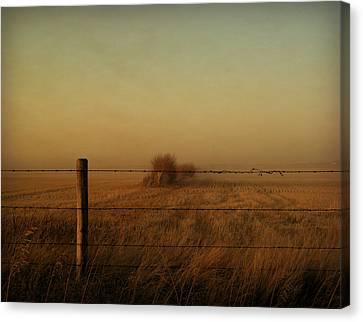 Silence Of Dusk Canvas Print by Leanna Lomanski