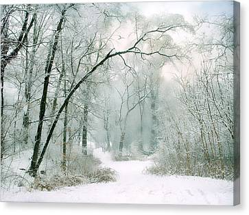 Silence Of Winter Canvas Print by Jessica Jenney