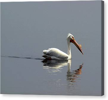 Silent And Reflective Canvas Print by Thomas Young