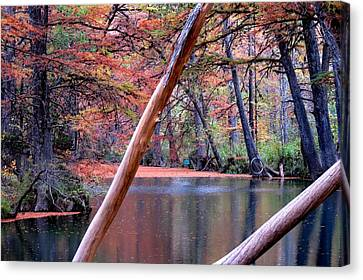 Canvas Print featuring the photograph Silent Colors by David  Norman