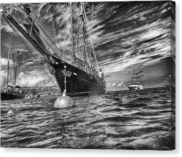 Canvas Print featuring the photograph Silent Lady by Howard Salmon
