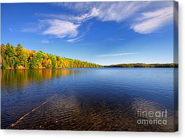 Silent Lake 4 Canvas Print by Charline Xia