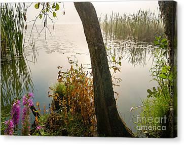 Silent Lakeside Canvas Print