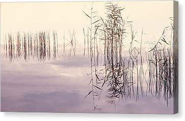 Silent Rhapsody. Sacred Music Canvas Print by Jenny Rainbow
