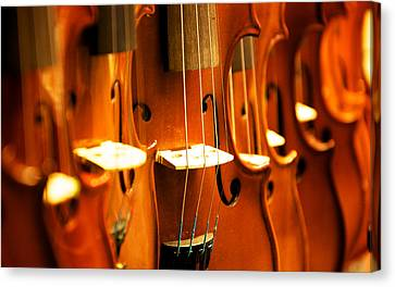 Silent Violins Canvas Print by Maurizio Incurvati