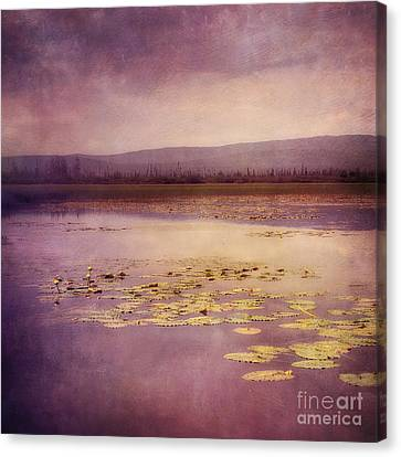 Silent Water  Canvas Print by Priska Wettstein