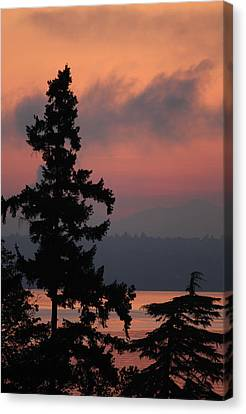 Canvas Print featuring the photograph Silhouette At Sunrise by E Faithe Lester