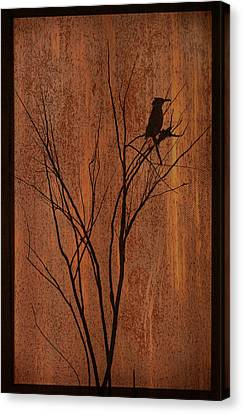 Canvas Print featuring the photograph Silhouette by Barbara Manis