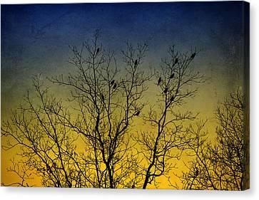 Country Scenes Canvas Print - Silhouette Birds Sequel by Christina Rollo