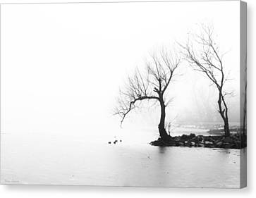 Canvas Print featuring the photograph Silhouette In Fog by Yvonne Emerson AKA RavenSoul