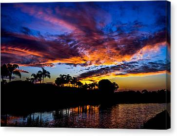 Silhouette Of Color Canvas Print